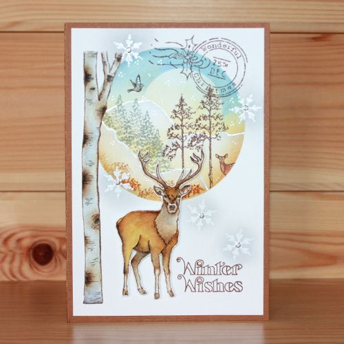 Christmas has arrived at Hobby Art! CS138D 'Nature Trail' A5 Clear set contains 22 stamps. Designed by Sharon Bennett. Overall size of set - All our clear stamps are made with photopolymer resin. This set is perfect for scene building and great to use all year round. Overall size of set - 235mm x 155mm approx. Card made by Franka Benjaminsen