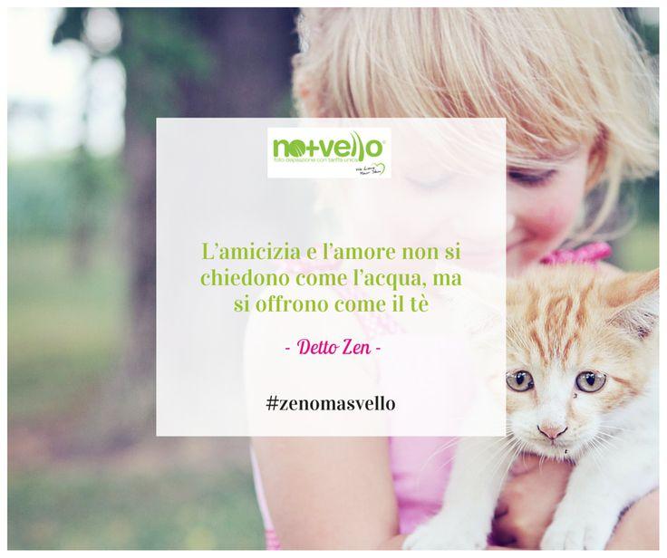 Questa settimana vogliamo cominciarla in dolcezza #zenomasvello