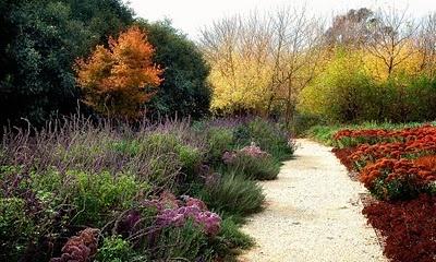 paradis express: Rick Eckersley designs gardens