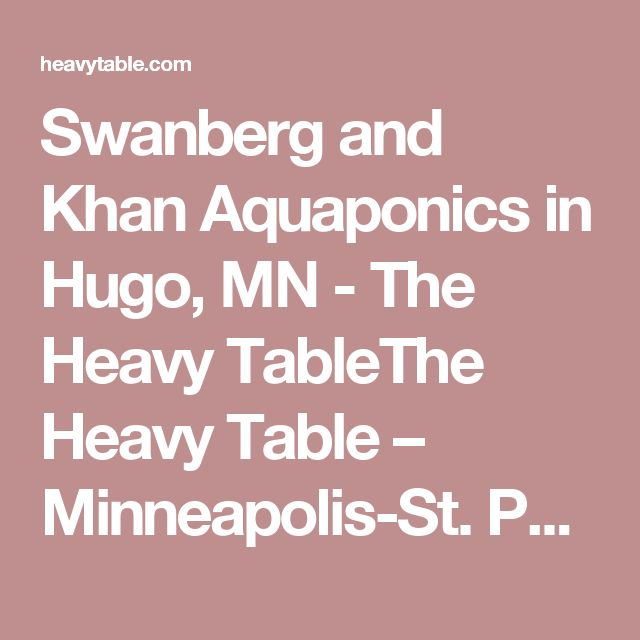 Swanberg and Khan Aquaponics in Hugo, MN - The Heavy TableThe Heavy Table – Minneapolis-St. Paul and Upper Midwest Food Magazine