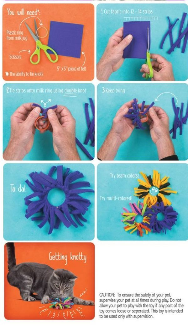 If You Are Craving For A Cuddle That Relaxes You Try To Cuddle With Your Cat Try These Easy Diy Cat Toys You Can T Homemade Cat Toys Diy Cat Toys