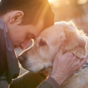 5 easy ways to keep your dog healthy this spring
