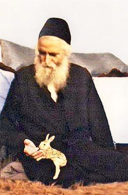 Elder Paisios  ______ΕΛΛΗΝΙΚΗ ΝΑΥΣ_______: Η επικοινωνία του Γέροντος Παϊσίου με τα ζώα