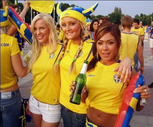 Image result for sweden fans