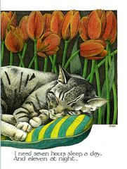 Funny card by Simon Drew - #Cat - Seven hours sleep a day | Comedy Card Company
