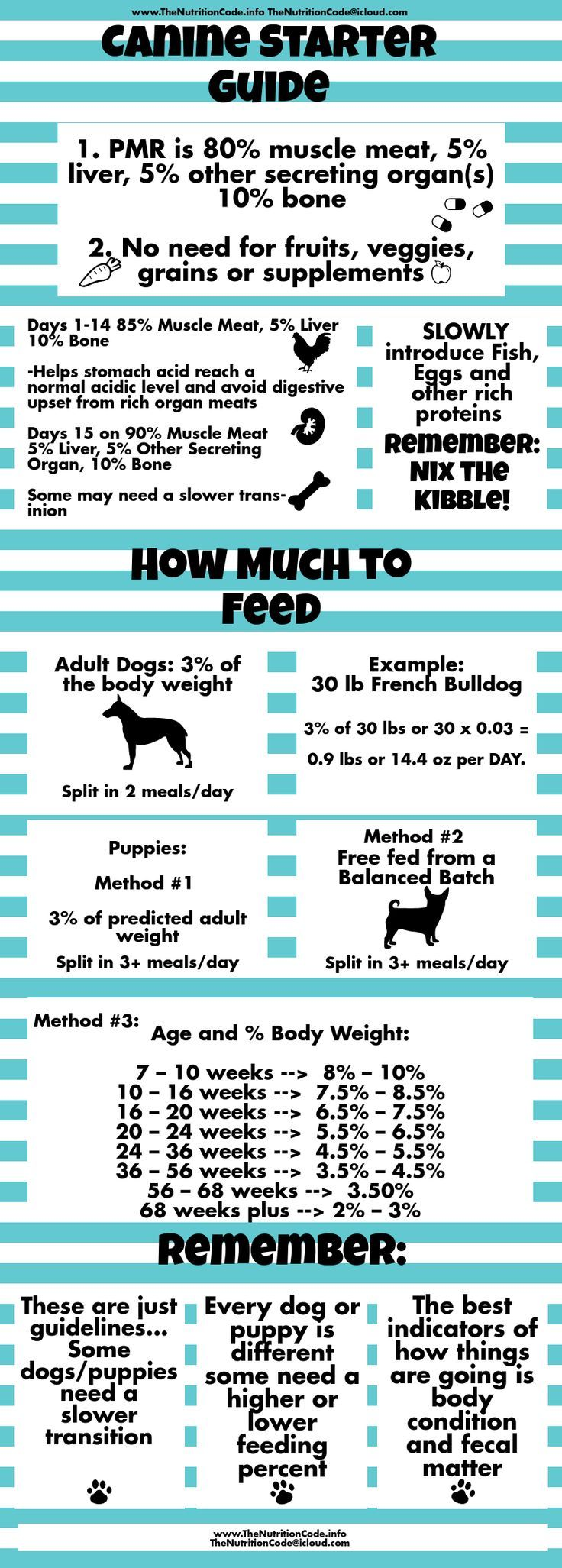 45 best raw diets for cats images on pinterest clean eating tips get the scoop on the basics of transition your dog or puppies to a species appropriate nvjuhfo Images