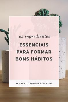 hábitos, desenvolvimento pessoal, organização, produtividade, planejamento semanal, qualidades, virtudes.