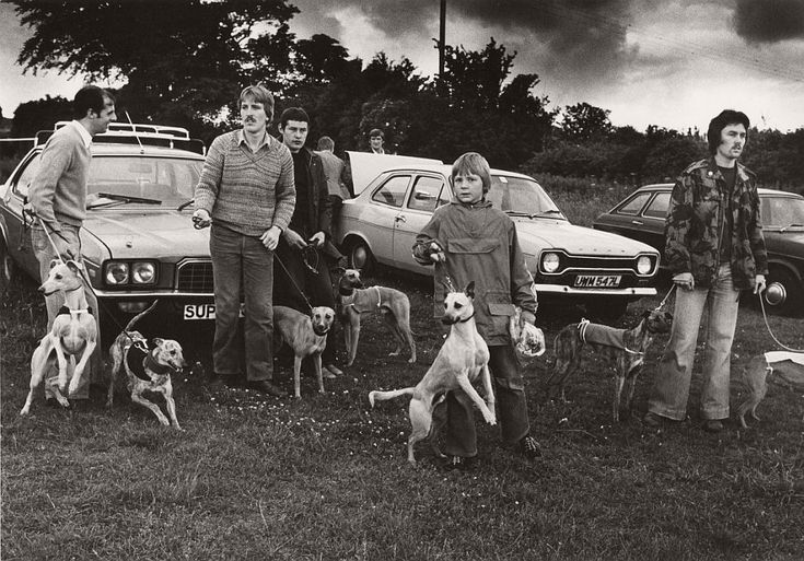 Miners racing their greyhounds, North East Consett, 1980 Colin Jones