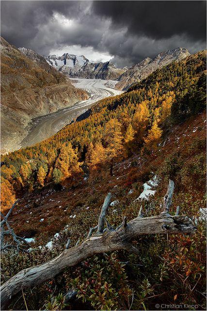 ✯ Aletsch Glacier - Switzerland