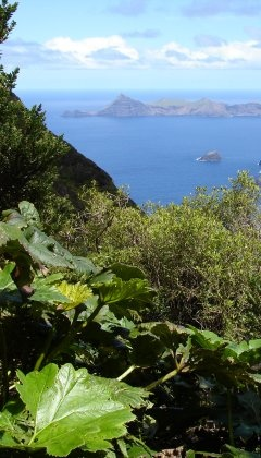 Isla Robinson Crusoe - As primitive as may be