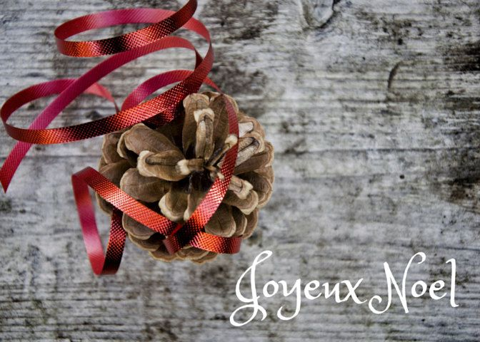 Joyeux Noel Photo Greeting Card, 4x5 christmas cards, blank inside, merry…