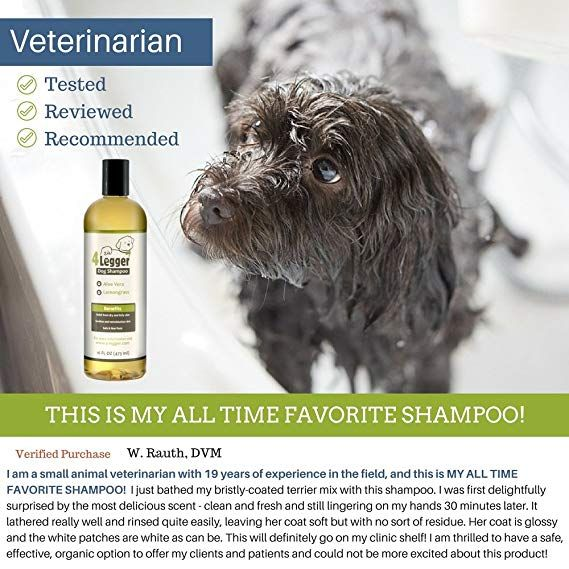 Top 5 Best Shampoos For Shih Tzu Puppy In 2020 Dog Shampoo Best