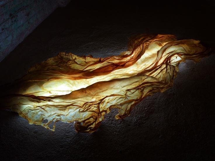Rosalyn Driscoll - River of Hades: Fire. 2011  Rawhide  1' x 7' x 3'