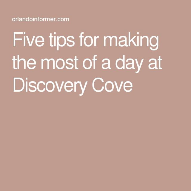 Five tips for making the most of a day at Discovery Cove