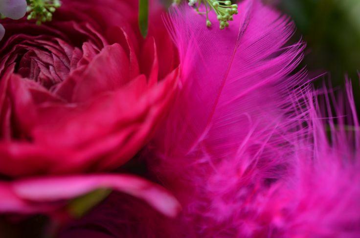 """""""Pink Easter"""" #easter #ostern #pink #blumen #flower #rose #schneeball #nelken #feder #bloomy #spring #fruehling #girlie #wachsflower #ranunkel #strauss #geschenk #blume2000 #blume2000de // Lieferbar bis zum 07.04.2015"""