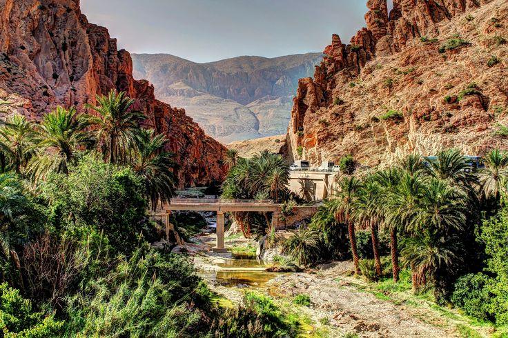 Biskra, Algeria Biskra is located in northeastern Algeria