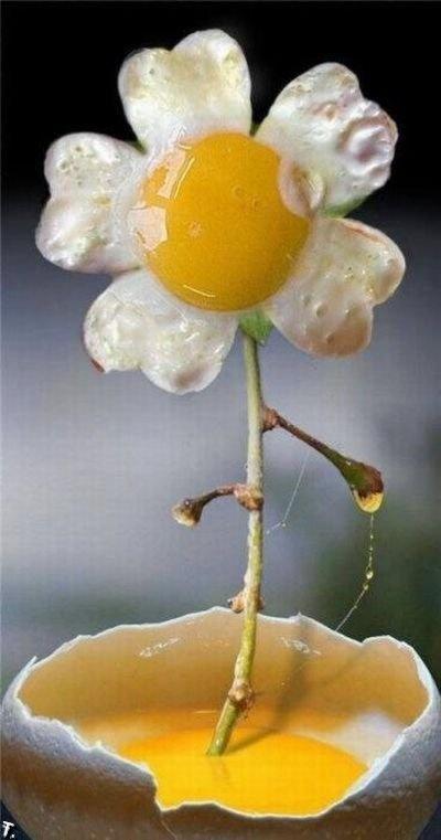 flowered egg!