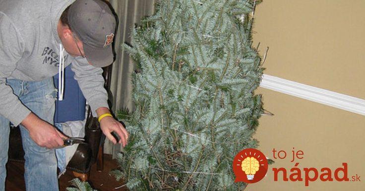 Každoročne sa v Európe predajú stovky miliónov vianočných stromčekov. Akoby nestačilo, že ide iba o krátkodobú sezónnu ozdobu našich príbytkov, mnohí sa nesprávnou starostlivosťou postaráme o to, aby sme sa zo stromčeka tešili ešte kratšie.    Pritom