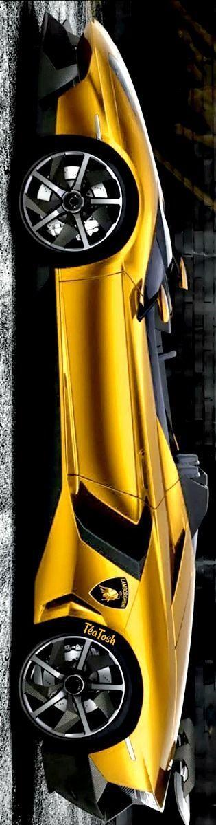 Téa Tosh Golden Lamborghini