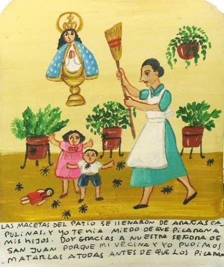 В цветочных горшках на террасе развелись пауки черные вдовы, и я боялась, что они укусят моих детей. Благодарю Пресвятую Деву Сан-Хуанскую, так как мы вместе с соседкой перебили всех пауков, прежде чем они нас покусали.