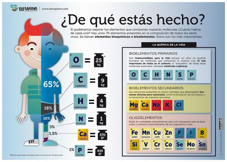 Composición Química del Cuerpo Humano #cuerpo #humano #quimica