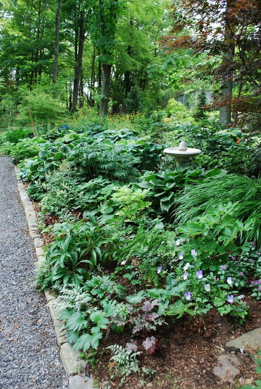 this garden design lexington massachusetts is a shade garden comprised of shade tolerant plants and perennials