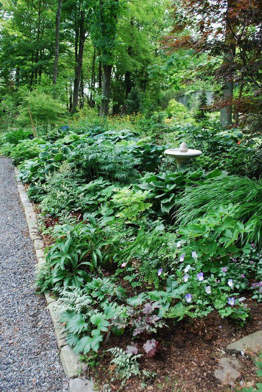 61 best shade garden images on pinterest landscaping for Woodland shade garden designs