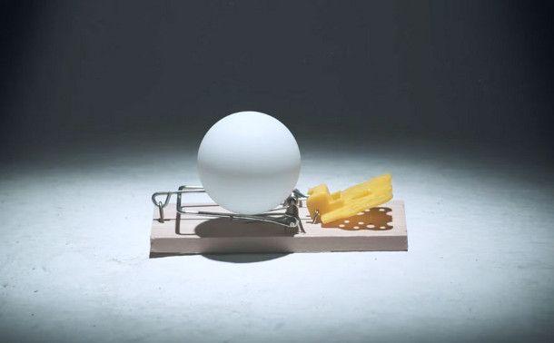ping-pong-ballen-muizenvallen-4