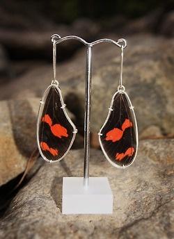 Butterfly wing earrings. 2012