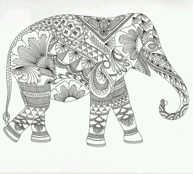 80 best    arTErapia animales    images on Pinterest Coloring - best of complex elephant coloring pages