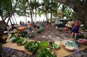Things to do In Santa Teresa - GO to the organic farmers market http://costarica-beachrentals.com/things-to-do-in-santa-teresa-costa-rica/