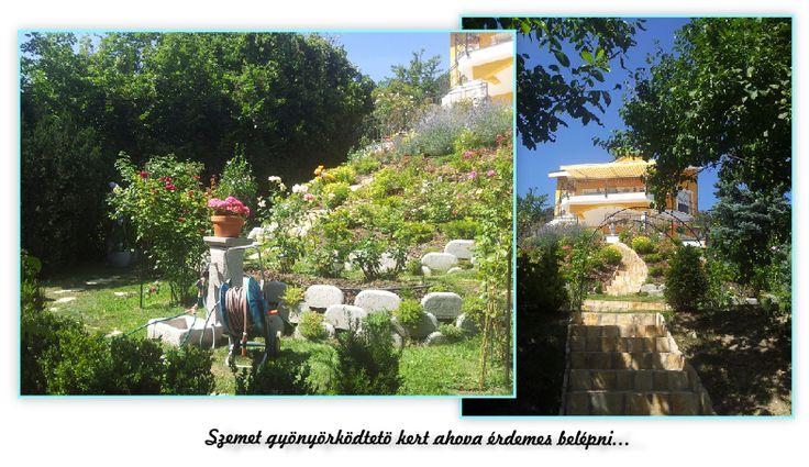 A kertépítés menetéről itt olvashat:  http://www.tiptopkert.hu/kertepites-budapest-ii-keruletben/