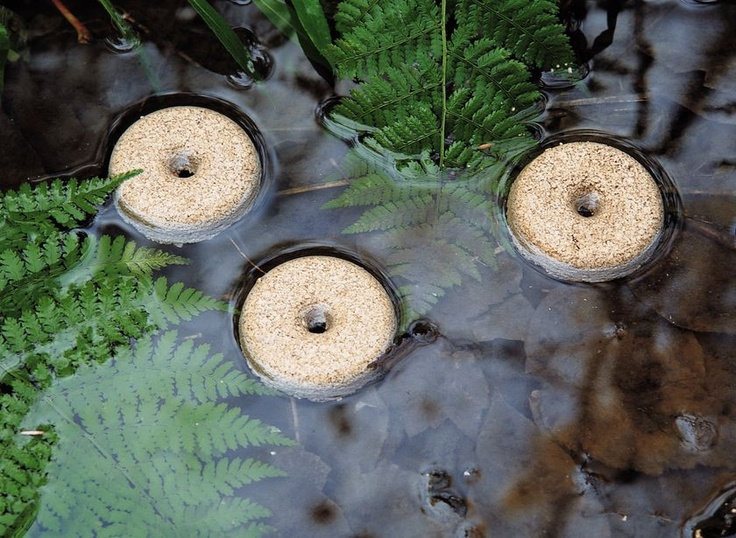 Mosquito Control Rings