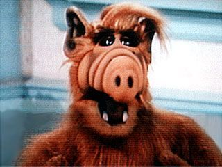 LOVE ALF - just heard they're making an Alf movie!