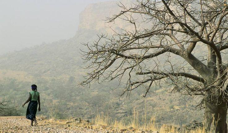 Una mujer camina por una zona desértica en Mali.  La mujer lidera la lucha contra el calentamiento global Las organizaciones femeninas reclaman poner a la igualdad de género en el centro de los fondos dedicados al desarrollo sostenible durante la Cumbre Mediterránea del Clima