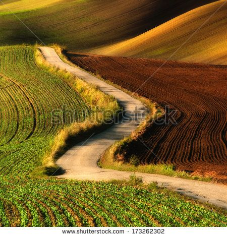 Rolling hills with fields in sunset light suitable for backgrounds or wallpapers. Southern Moravia, Czech republic by JMicic, via Shuttersto...