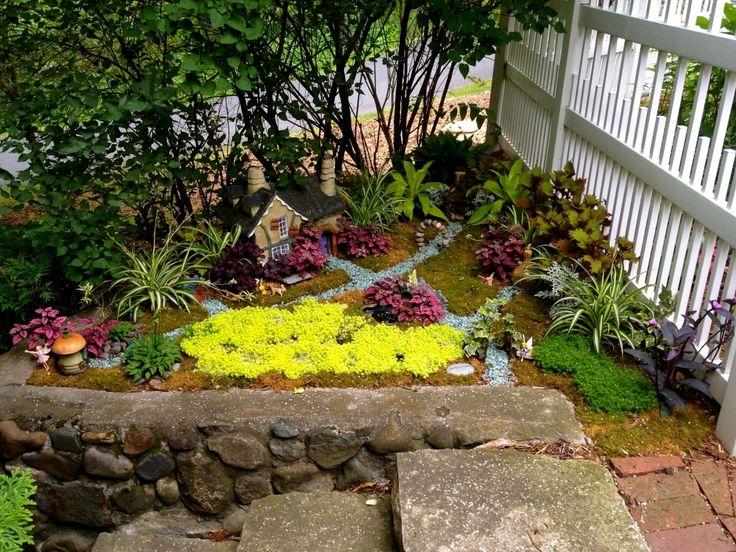 51 best Plants images on Pinterest Gardening, Flowers garden and