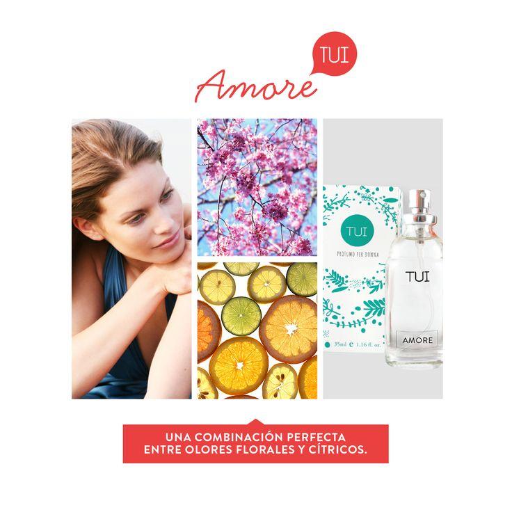 Perfumes Amore