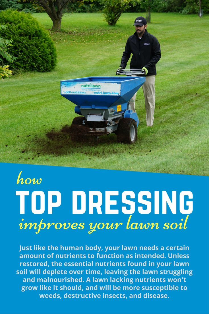 Click to find out how top dressing improves your lawn soil