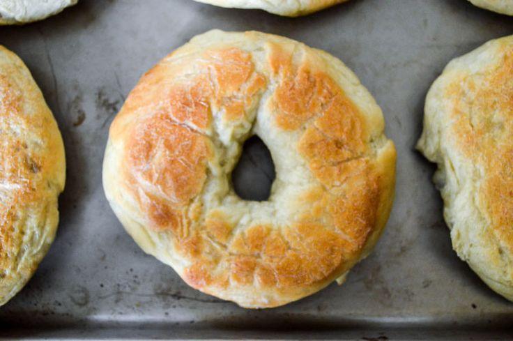 Plain Bagels Recipe