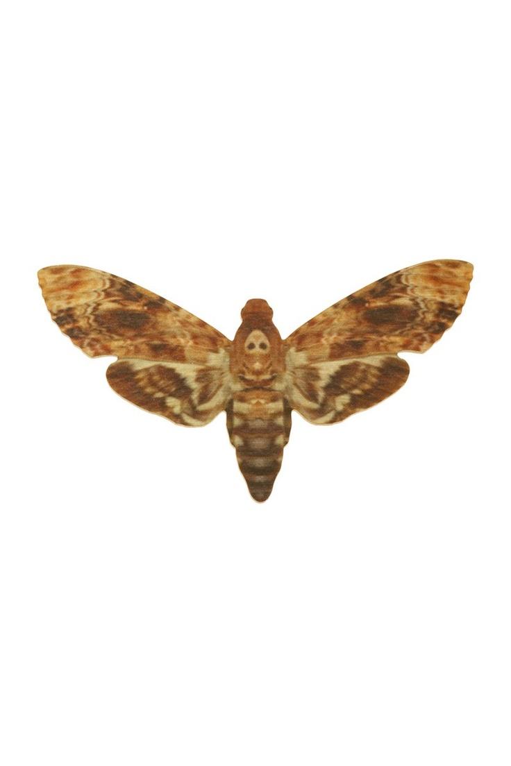 Tatty Devine Hawk Moth Brooch: Brooches Brown, Brooches 33, Black Dresses, Occa Dresses, Devine Hawks, Dresses Website, Devine Autumn Wint, Hawks Moth, Moth Brooches