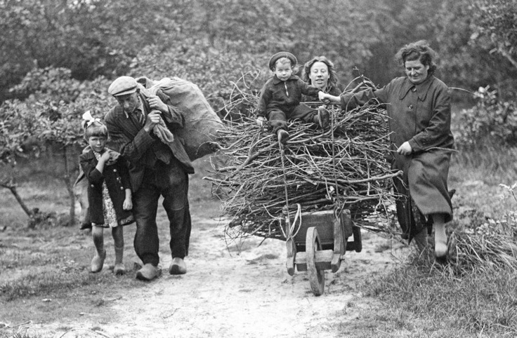 With almost no resources, the Dutch were forced to find their own fuel. In 1942, this family gathered wood in the wild reserve Wildrijk, near Sint Maartenszee.
