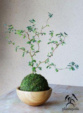 Connaissez-vous le Kokedama ? L. a. tendance végétale à suivre !