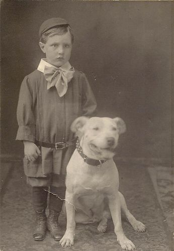 Victorian Boy with Pit Bull