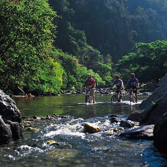 #Mountain biking in Mexico Like, Repin, Share, Follow Me! Thanks!