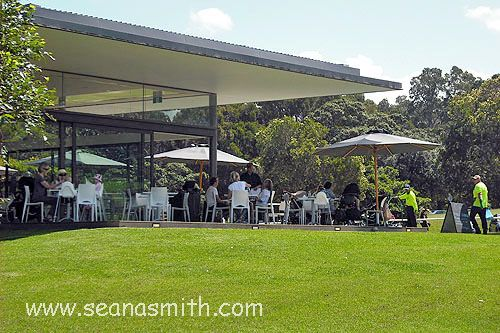 Sydney's Most Child-Friendly Cafes – Centennial Park Cafe