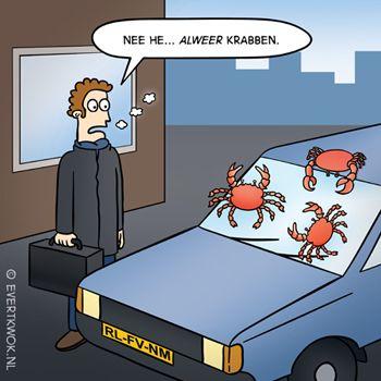 491 Krabben - Evert Kwok Cartoons - droge humor, woordgrappen & bananen