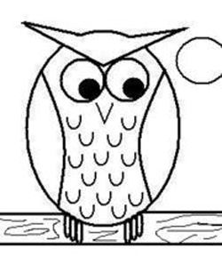 how to draw easy cartoon owls drawing lessons for kids - Basic Drawings For Kids
