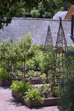 Tara Dillard: we'll use iron cones in the potager, and wind drop from your trees. Arne Maynard vegetable garden, Wales