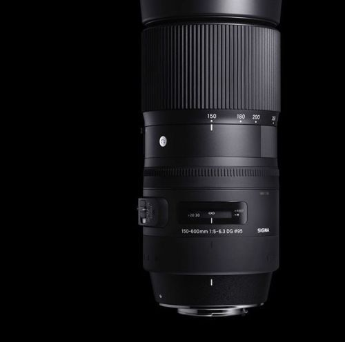 SIGMA 150-600mm F5-6.3 DG OS Contemporary. Lightweight and compact for its class this lens is ideal for wildlife birding and travel photography! . . #sigmaphoto #sigmacontemporary #150600mm #wildlifephotography #birdphotography via Sigma on Instagram - #photographer #photography #photo #instapic #instagram #photofreak #photolover #nikon #canon #leica #hasselblad #polaroid #shutterbug #camera #dslr #visualarts #inspiration #artistic #creative #creativity